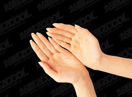 มือ PSD วัสดุ-5