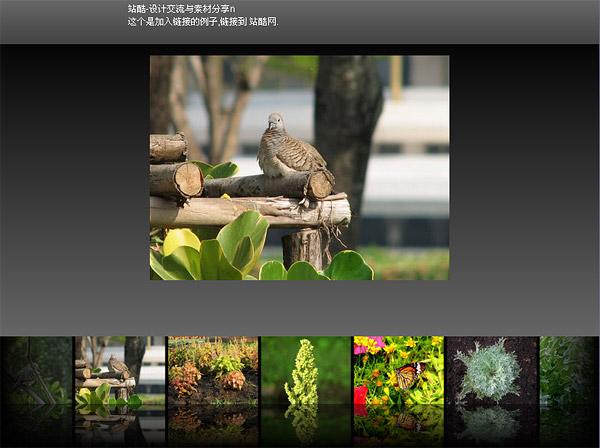 Flash + xml programa de visualización de imagen exquisita