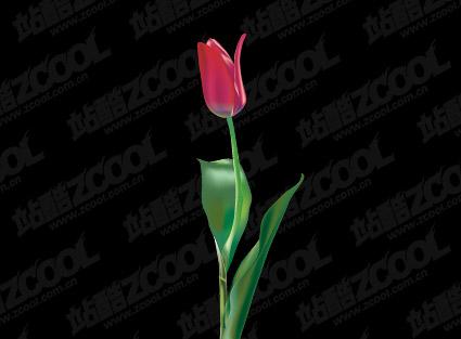 Material de vector de tulipán morado