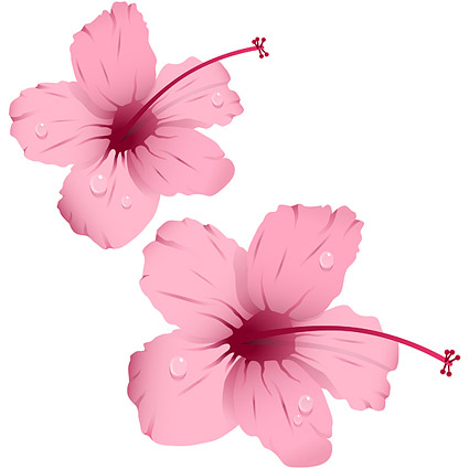 Вода с розовые цветки векторного материала