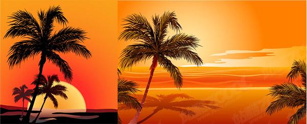 มะพร้าวเวกเตอร์มีผลกระทบต่อวัสดุพระอาทิตย์ตกริมทะเล