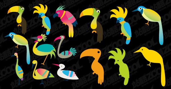 vector de aves