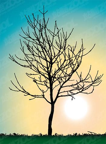 葉のベクター素材を樹木なし
