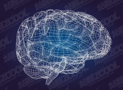 Modelo 3D del material de vector de cerebro-estilo