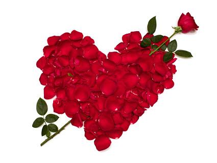 Pétalas de rosa composta por material de imagem em forma de coração