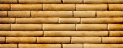 Arrière-plan de bambou séchées du matériel photo