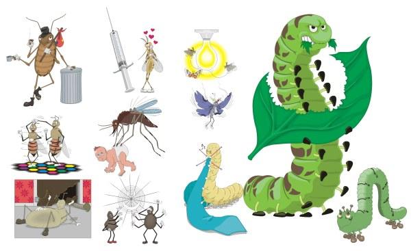 모기, 바퀴벌레, 거미, 거미