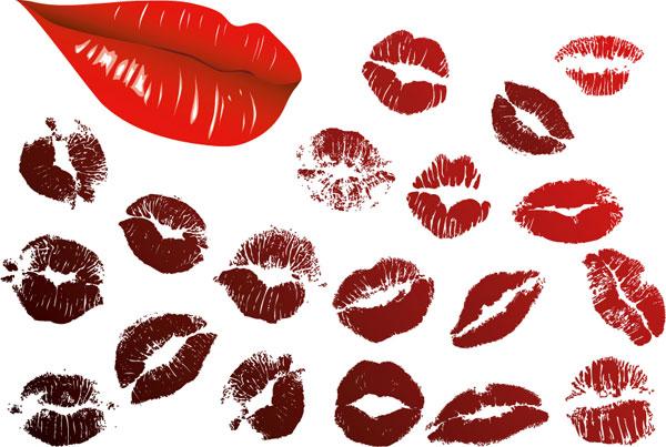 키스, 입술