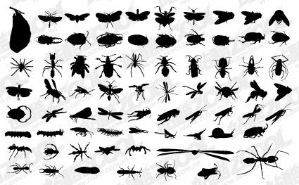 خيال متجه لمختلف المواد الحشرات