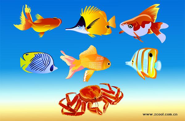 Fisch und Krabben