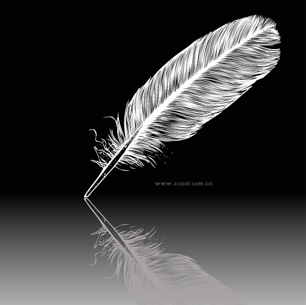ขนนกสีขาวเวกเตอร์วัสดุ