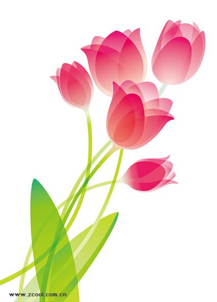 matériau spécial Tulip