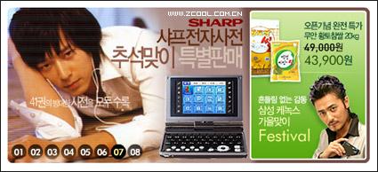 韓国美しいフラッシュ-スタイルの広告コード