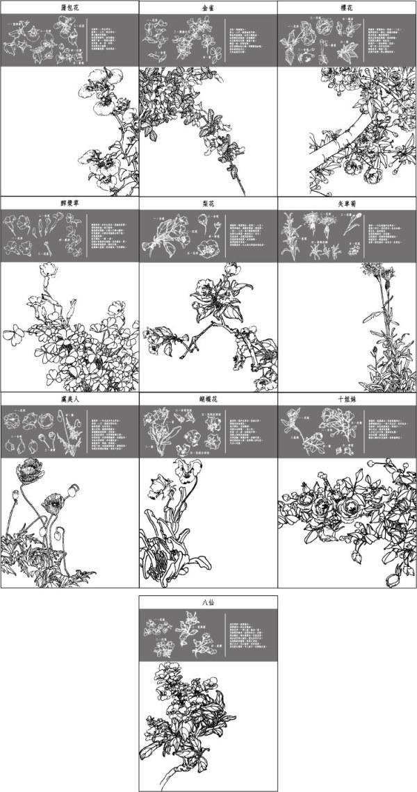Mariposa flor, amapola, cornflowers, pera, cerezos en flor
