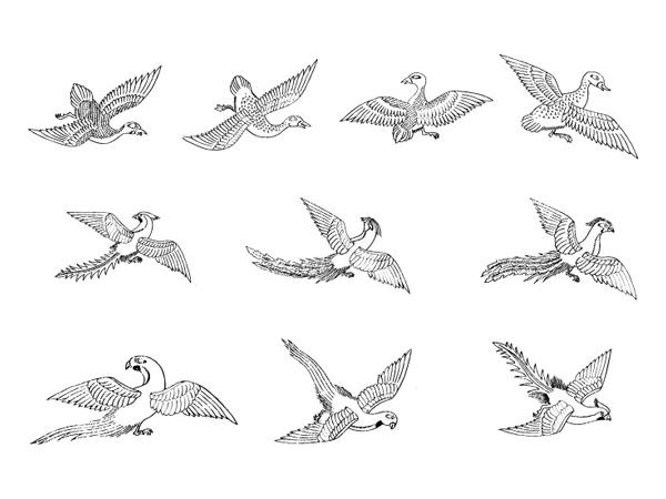 Vector de ave Fénix