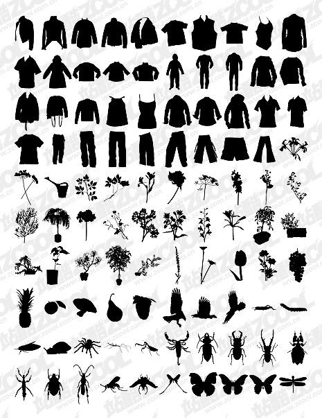 Camisetas, pantalones, flores, plantas, insectos vectores material