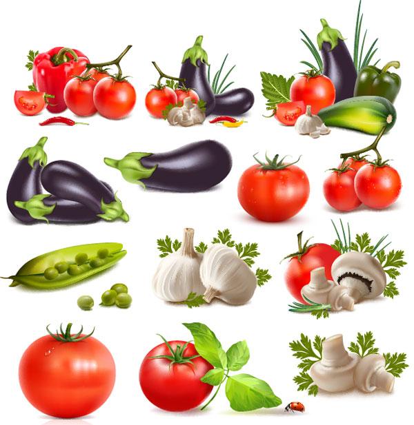 Pimientos, berenjenas, tomates, ajo, judías, pepino, tomate