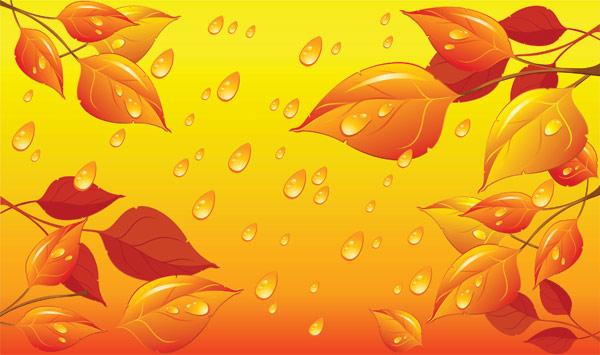 Eau des feuilles