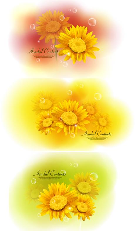 黄色の菊 dimorphotheca ベクトル材料