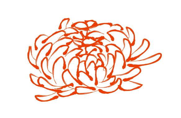Хризантемы шаблон вектор