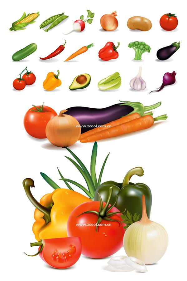 Несколько общих овощи векторный материал