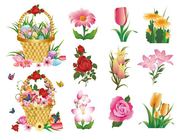 ดอกไม้แบบเวกเตอร์ชุดวัสดุ