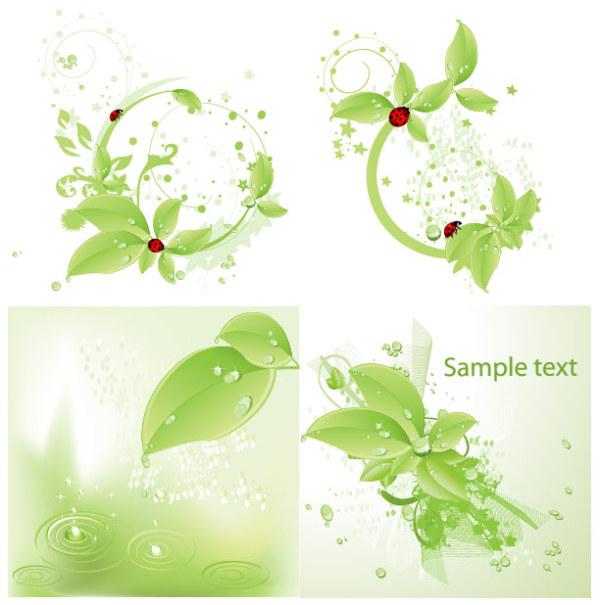 Gotas de material de vectores ladybird hoja verde