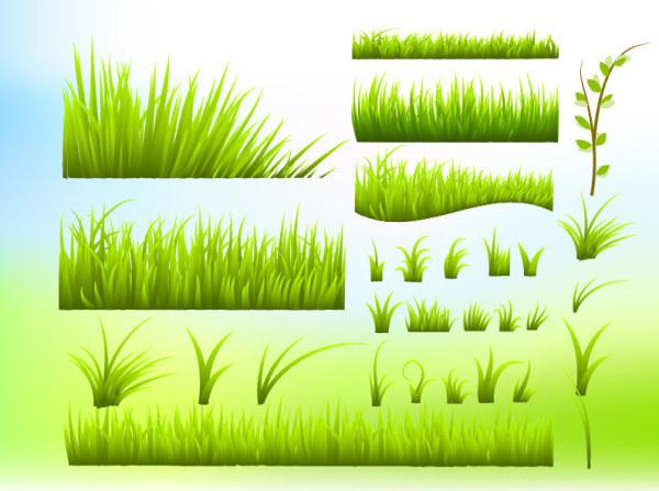 หญ้าสีเขียวเวกเตอร์วัสดุ
