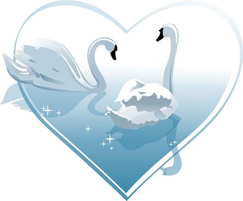 หัวใจที่มีรูปหงส์ขาวเวกเตอร์ของวัสดุ