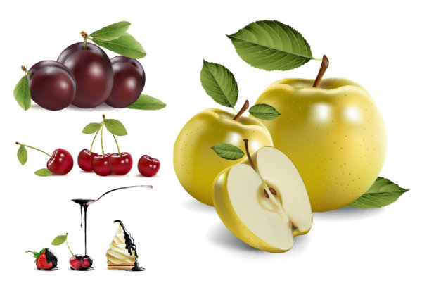 4 real fruto de vectores