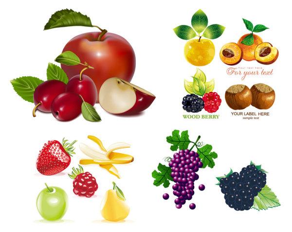 Плоды задать вектор материала