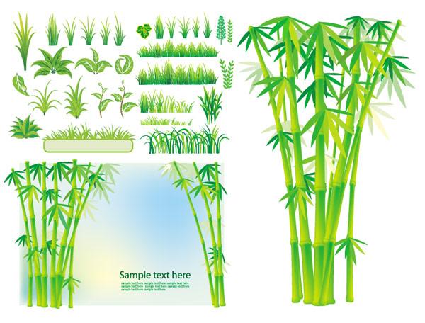 เวกเตอร์ไม้ไผ่หญ้าพืช