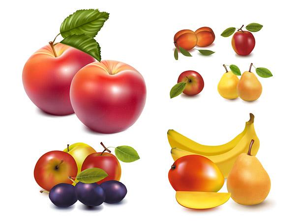 Vector de fruta realista de material