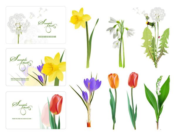 いくつかの花のベクトル