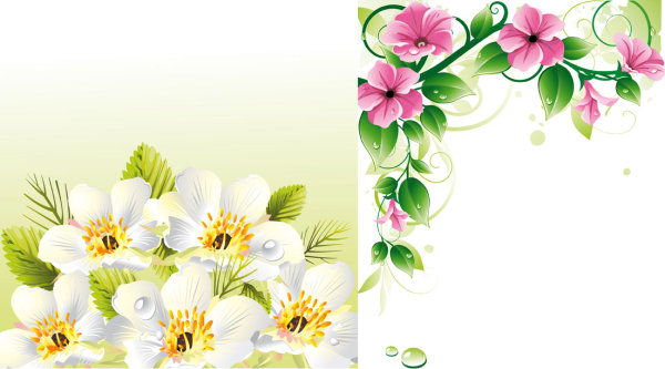 Vecteur fleur frontières u0026amp ; arrière-plan