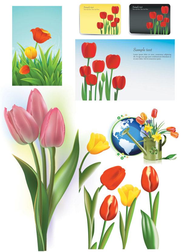 Vecteur de tulipes de matériel