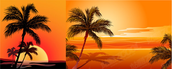 Vector de coco beach sunset sombra