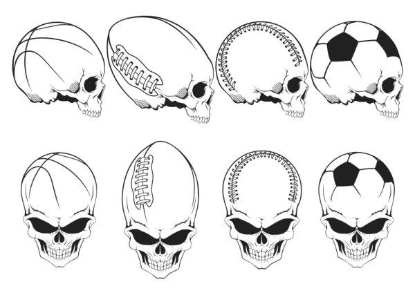 운동 요소 두개골