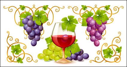 ベクトルのブドウとワイン