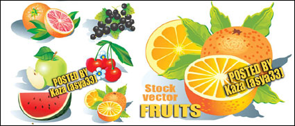 เวกเตอร์ผลไม้