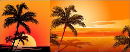 Vector de coco beach sunset sombra
