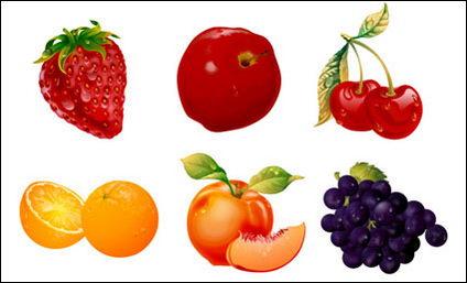 Fruits ultra-fin matériel vecteur