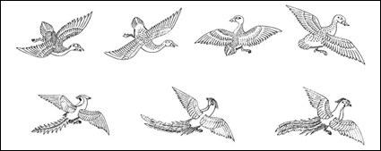 Vecteur d'oiseau Phoenix