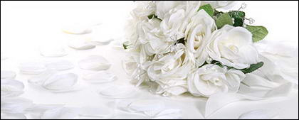 Белыми лепестками роз и букетов