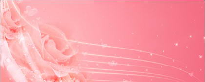 Sonhos de plano de fundo de rosas rosa