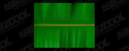 Material de imagen de calidad de hoja