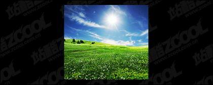 草空写真素材-2