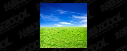 Grass céu imagem material-5