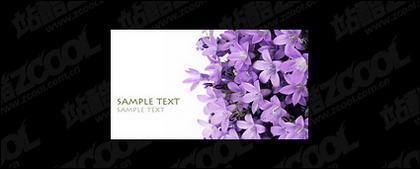 紫のユリの画像の品質の素材