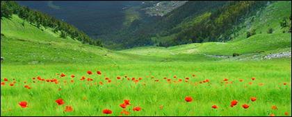 美しい田舎の風景写真素材